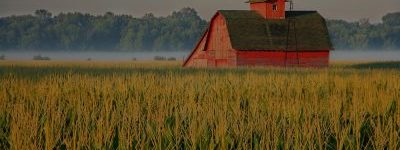 farm insurance Cicero, Madison, Norwich or Oneida NY